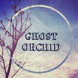 ghstorchid