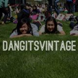 dangitsvintage