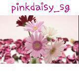 pinkdaisy_sg