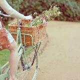 tealbicycles