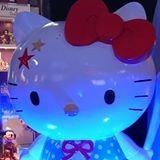 kittycat2508
