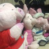 pigletfamily79