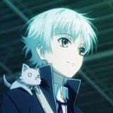 handsomecat77
