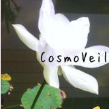 cosmo_veil