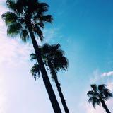 summer.sg