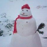 snowhan