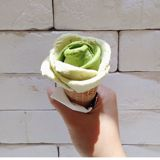 greenicecream