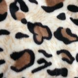 theleopard