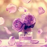 purplezzz