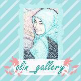 olin_gallery