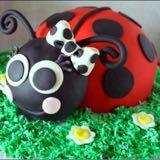 ladybug321