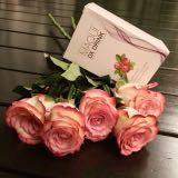 blossom0611