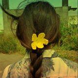 lilycorose
