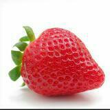 strawberrymilkice