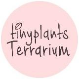 tinyplantsterrarium