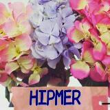 hipmer