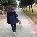 yi_chun_zhao