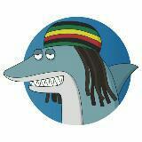 thereggaeshark