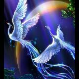 angela.judy.96