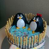 penguin23