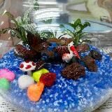 stonefish35