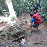 adventure2011