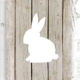 lana.bunnies