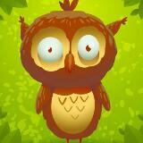 owllies