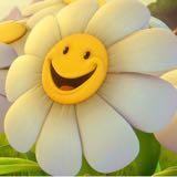 happygoluckyperson