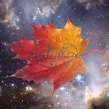 autumnleaf_