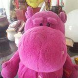 pinklyqq