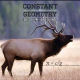 constant_geometry