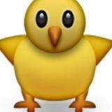 jimmy_bird