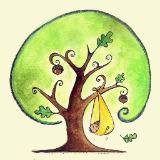oaktreebaby