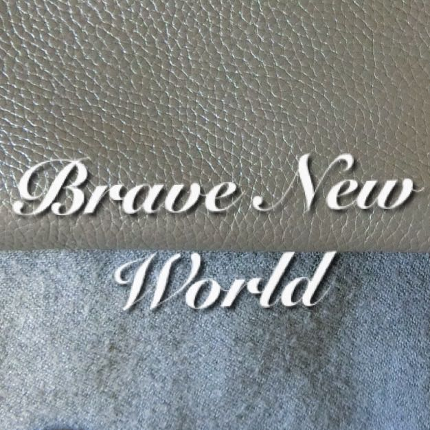 brave.new.world
