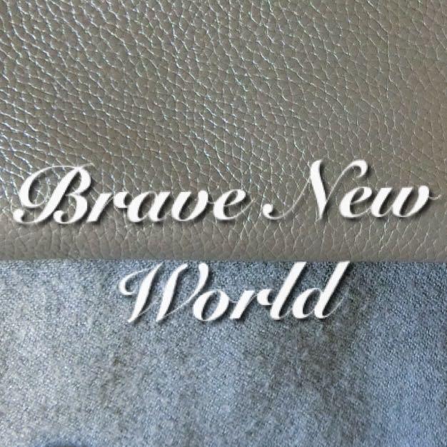 brave.new.world