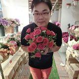 linlin_weiwei