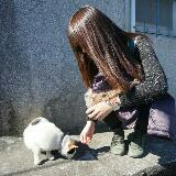 yun_daily