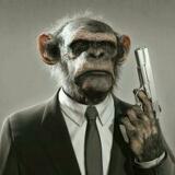 monkey_killers
