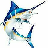 xsmonsterfish