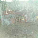 donkey_s