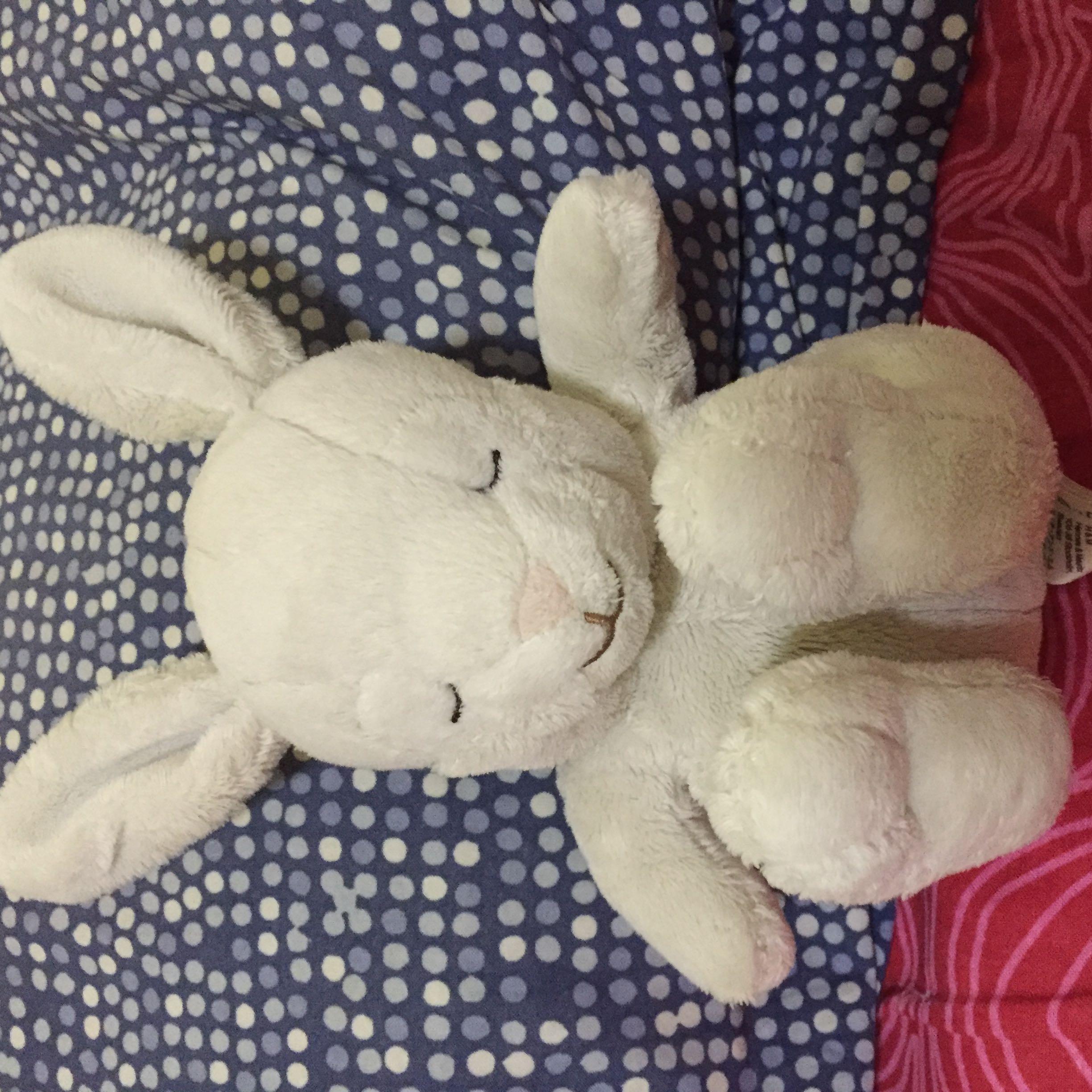 bunny123