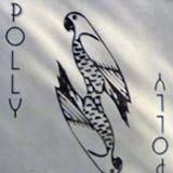 polly0529