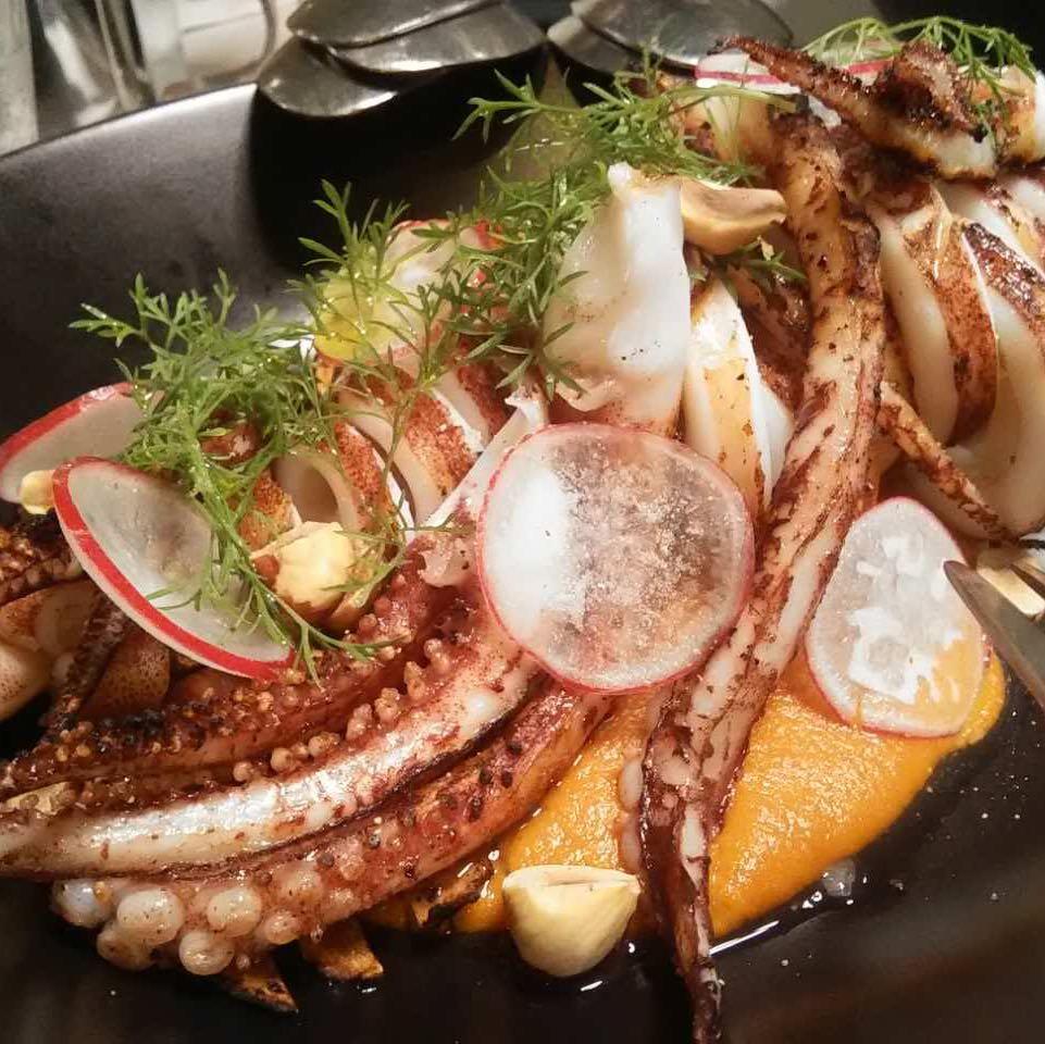 squidjr