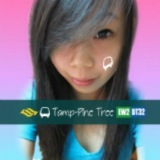 tamp_pine_tree