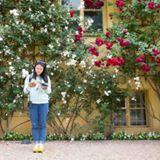 chingyan_yan