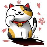 kittycatani