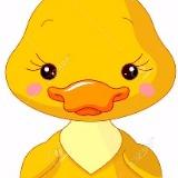 quackie.co