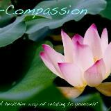 compassion2n
