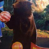 bear.bear.ballon